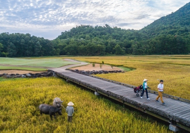 Vietnam Golf Coast 6 Days