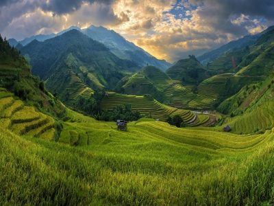 Rice-fields-on-terraced-of-Mu-Cang-Chai